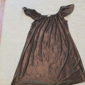 Everly metallic slate dress S